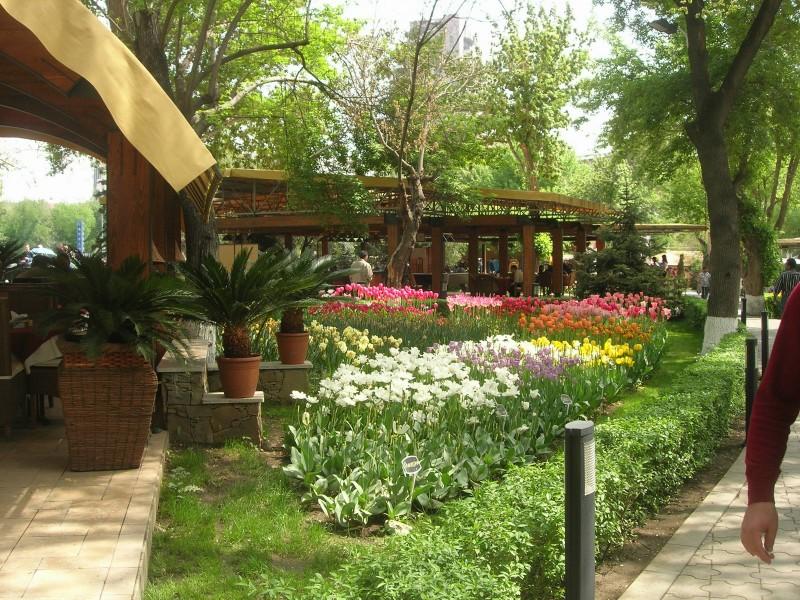 Garden cafes in Yerevan, Armenia